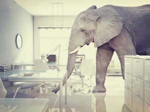 Elephant in the room about your new home and Internet service availability
